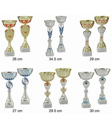 Lot de 12 coupes de 29 cm